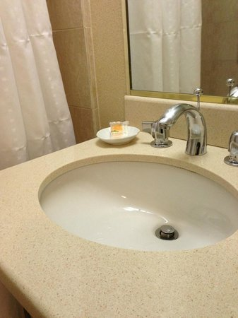 Holiday Inn Midtown / 57th St: Sink area