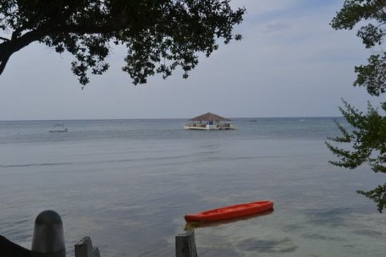 Bluewater Panglao Beach Resort: Kayak and Floating Bar