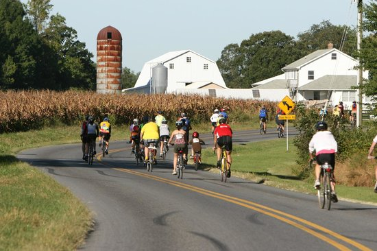 Sheraton Dover Hotel: Amish Bike Tour - September