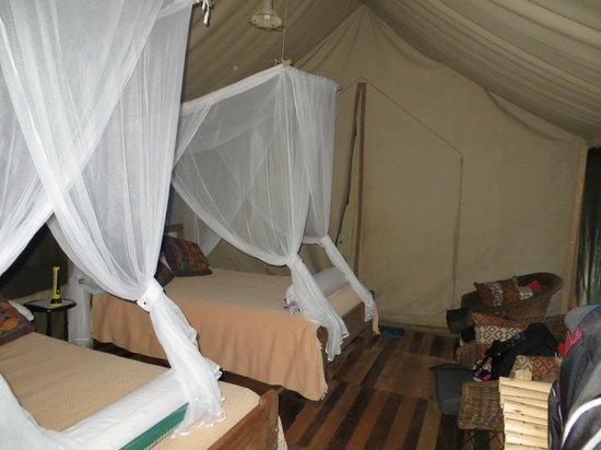 Bed and breakfasts in Kibale National Park