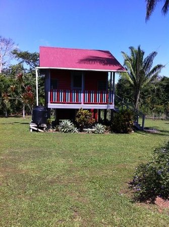 Lower Dover Field Station and Eco Jungle Lodge: The Red Cabana