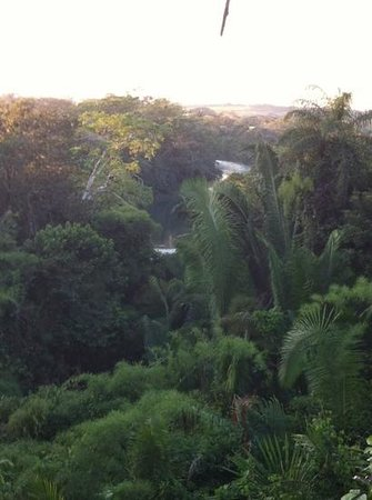 Lower Dover Field Station and Eco Jungle Lodge: View from Lower Dover