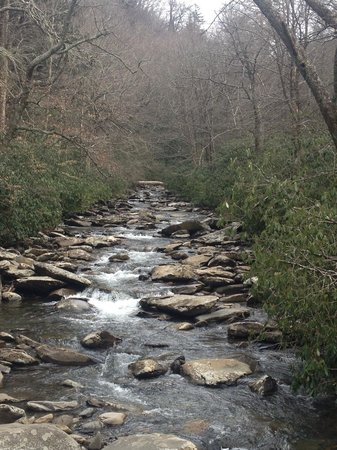 Pioneer Rental Management: Beautiful stream in National Park