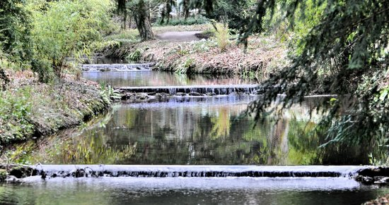 Waterway Picture Of Thorp Perrow Arboretum Bedale
