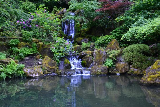 Many water features picture of portland japanese garden for Japanese koi water garden