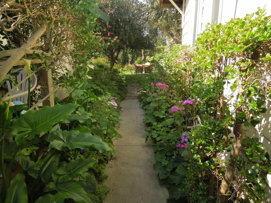 Sandpiper Inn: Walkway to garden
