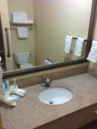 Holiday Inn Express New Orleans East: Bathroom was nice and up to expectations