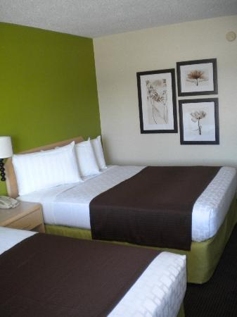 AmericInn Lodge & Suites Oshkosh: Newly Renovated in 2013