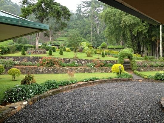 Ceylon Tea Trails: Norwood