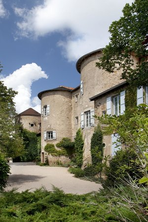 Chateau d'Ige