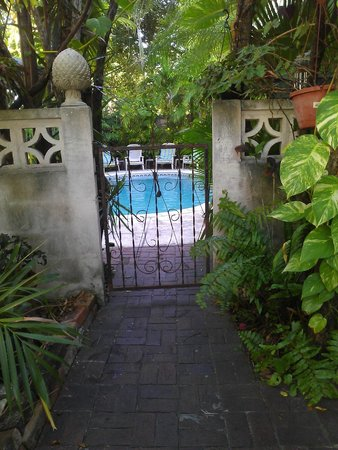 Coco Plum Inn Bed and Breakfast: The private entrance to the pool and the breakfast area