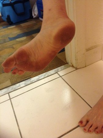 Super 8 North Palm Beach: My feet turned black from sticky &quot;new carpet&quot;