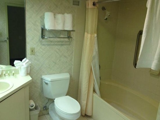 Holiday Inn Select Columbia - Executive Center : the tub, toilet, and sink have seen better days 