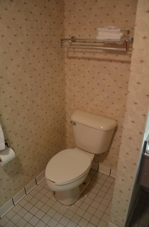 Alpine Lodge & Suites: Toilet