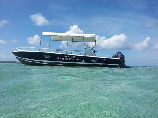 Gumption - Sea It Clear Glass Bottom Boat Tours
