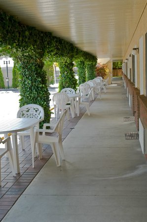 Siesta Suites: Shaded patios and deck spaced outside your suite
