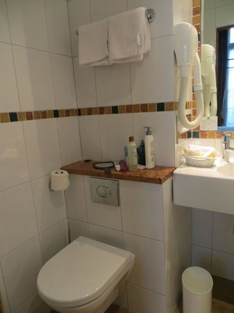 Hotel Saint Paul Rive Gauche : Bathroom 