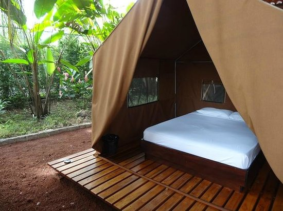 Arenal Backpacker's Resort: Private jungle tent