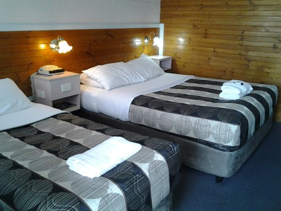 Country Leisure Motor Inn: Twin room