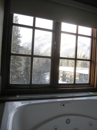 Banff Caribou Lodge &amp; Spa: View from bedroom