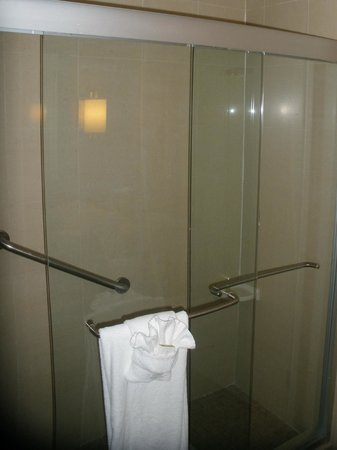 DoubleTree by Hilton Austin - University Area: Shower