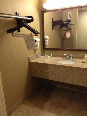 Holiday Inn - Mobile Downtown/Historic District: bathroom is separated from toilet but at least contained somehow. closet is too close to sink