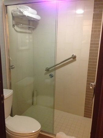 Hyatt Place Nashville/Opryland : 2 Night Stay - tiny bathroom