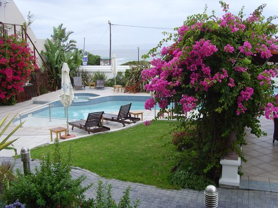 Misty Waves Boutique Hotel Hermanus: View over the pool area