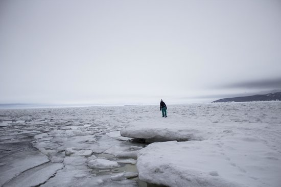 "Cabot Shores Wilderness Resort: Exploring the frozen ocean near the ""beach"""