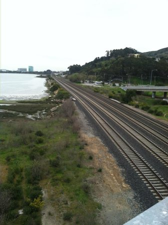 The Brisbane Lagoon, and Train Tracks
