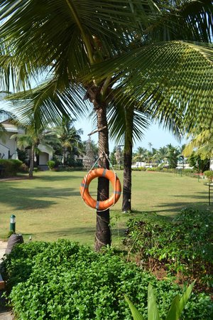 Royal Orchid Beach Resort & Spa, Goa: Hotel grounds