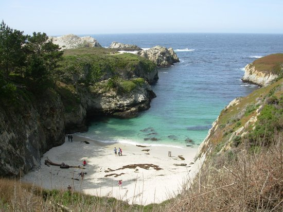 Comfort Inn Carmel By The Sea: Point Lobos