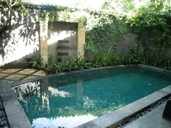 Bali Ayu Hotel: The pool in our villa