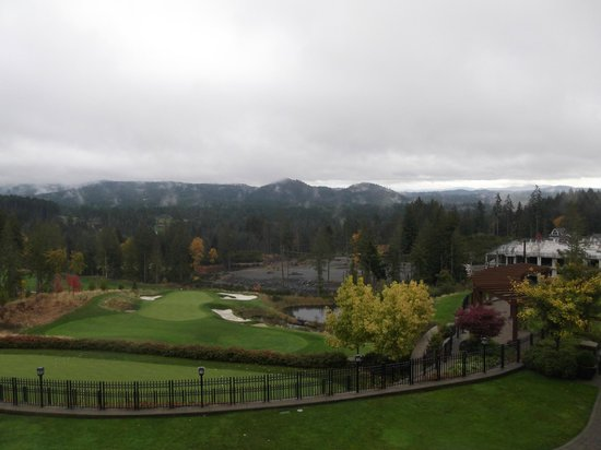 Westin Bear Mountain Victoria Golf Resort & Spa: View from the Terrace