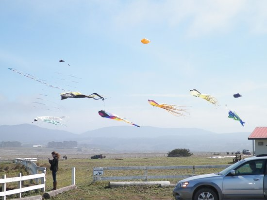 Super 8 Fort Bragg: Kite festival