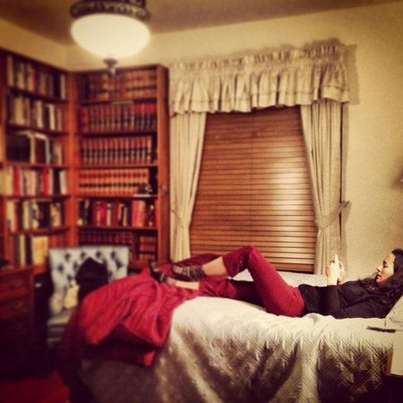 Best Kept Secret B & B: the cozy library room