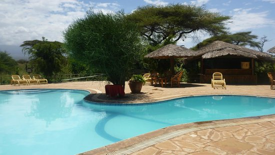 Kibo Safari Camp: Nice pool
