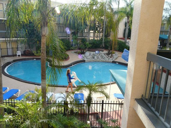 Baymont Inn and Suites Tampa near Busch Gardens/USF: Pileta
