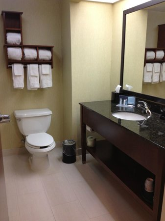 Hampton Inn Richmond Mechanicsville: Standard bathroom