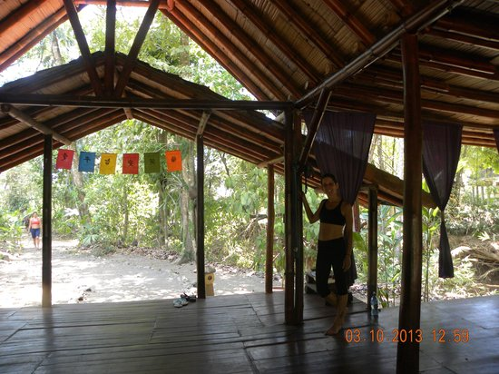 Vida Asana - Eco Lodge: Yoga time....
