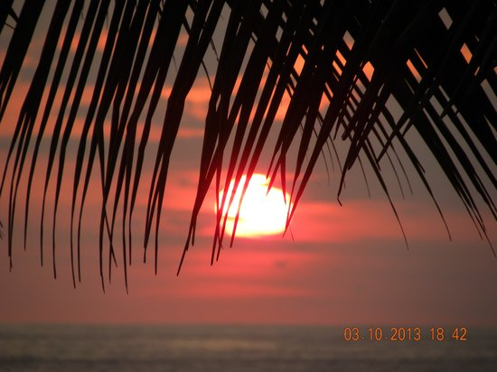 Vida Asana - Eco Lodge: Sunset in Playa Hermosa