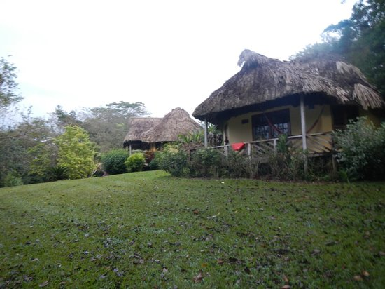 The Lodge At Big Falls: View of the Tiger Heron cottage from below