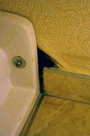 Sturbridge Host Hotel & Conference Center: Hole in Wall at Base of Toilet Fixture