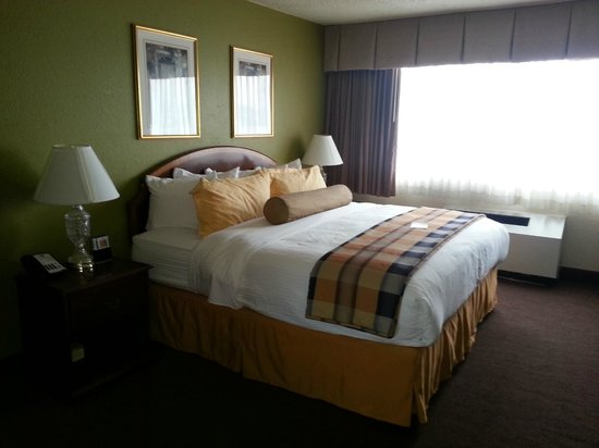 BEST WESTERN PLUS Milwaukee Airport Hotel & Conference Ctr.: I told you the beds were pretty!