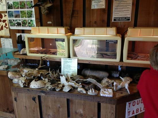 Needville, TX: nature centre