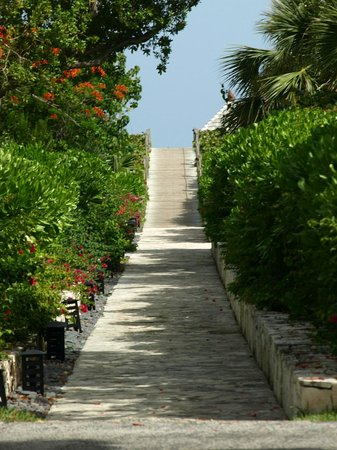 : Lovely path to the beach