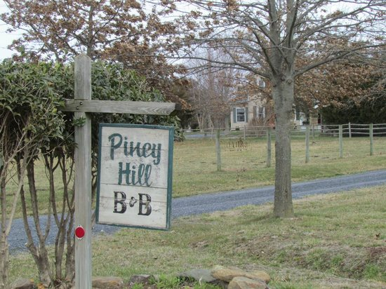 Piney Hill Bed & Breakfast: view from driveway