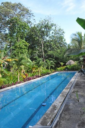 Bluff Beach Retreat: Pool from far end