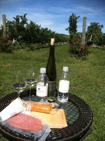 Hume, VA: Picnic at Philip Carter Winery