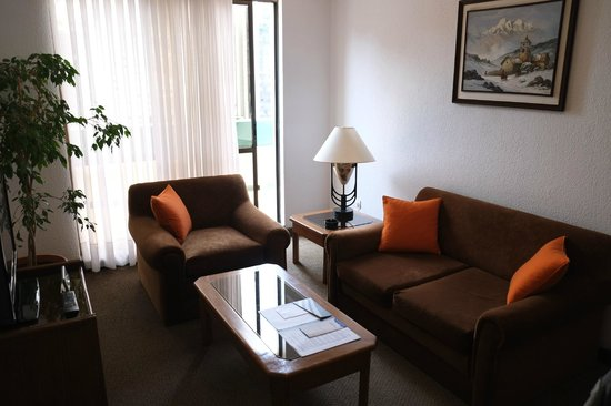 Camino Real Aparthotel: LIving room of the room